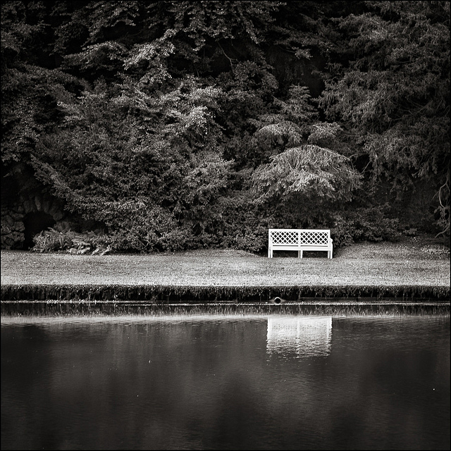 Bench at Fountains Abbey, Yorkshire - Yorkshire